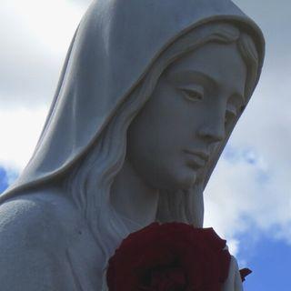 Maria la luz de nuestra noche