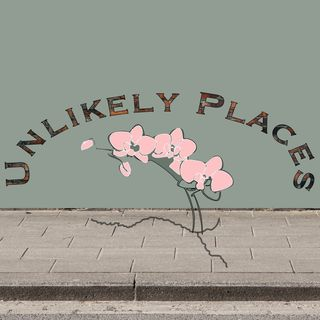 Unlikely Places - Trailer