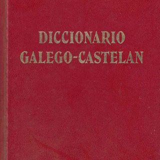 1x08 – Diccionario Galego-Castelán, de X.L. Franco Grande