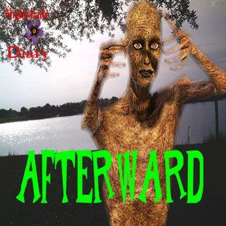 Afterward   Edith Wharton   Podcast