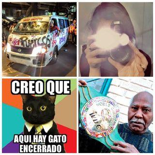 """""""Aquí Hay Gato Encerrado"""", Manifestación En Insurgentes/Reforma, """"Mantequilla"""" Nápoles, Día Mundial de la Fotografía"""