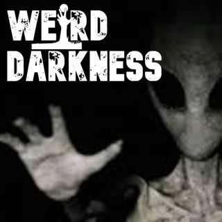 """ALIEN RACES That Have Contacted EARTH"" and More Freaky True Stories!"