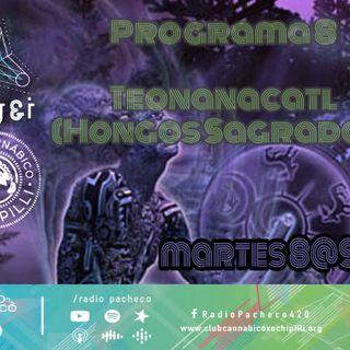 """""""Teonanacatl"""" Psy & I Prog 8"""