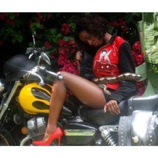 Ms Shevy Vs Lil Wayne- Ms Shevy's Place