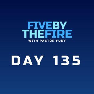 Day 135 - Living Stones