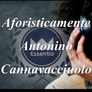 l' Aforisma di Antonino Cannavacciuolo.m4a