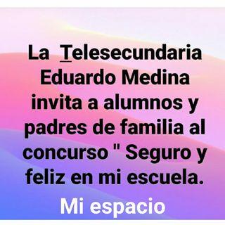 """Telesecundaria: Concurso"""" Seguro Y Feliz En Mi Escuela"""""""