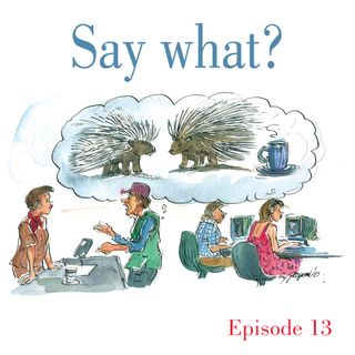 Ep.13 Say what?