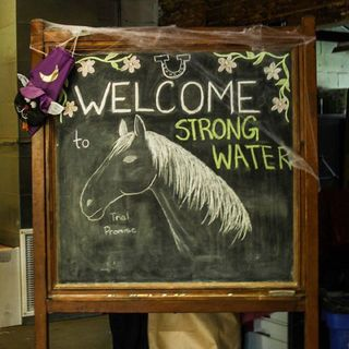 WBZ Cares: The Mission of Strongwater Farm