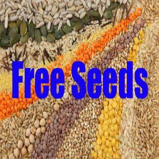Free Seed