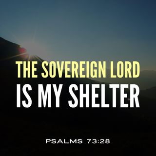 God is Your Sovereign Shelter of Rest to Cheer You Up When Overwhelmed by Life