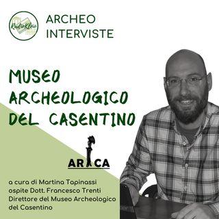 ArcheoInterviste: Museo Archeologico del Casentino
