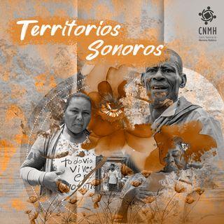 22 Territorios Sonoros - El conflicto armado en cifras: Observatorio de Memoria y Conflicto
