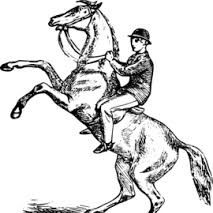 """""""Brother, why you riding that Horse"""""""