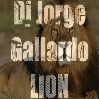 14 - Lion (Club Mix)