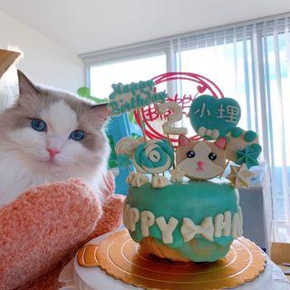 making dog cake