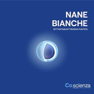 Nane Bianche (Settantaquattresima Puntata)