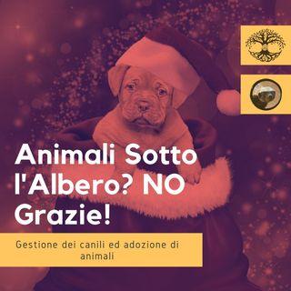 Animali Sotto l'Albero? NO Grazie (intervista): Impronta Animale