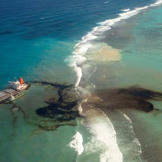 Chi pagherà per l'habitat danneggiato dal recente disastro ambientale a Mauritius?
