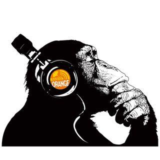 17/02/2020 La Scimmia - Raccolta differenziata (by Angelo Ballabio)