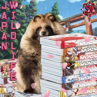 Episodio 12 - Manga Vibe: può funzionare una rivista di manga come quelle in Giappone?
