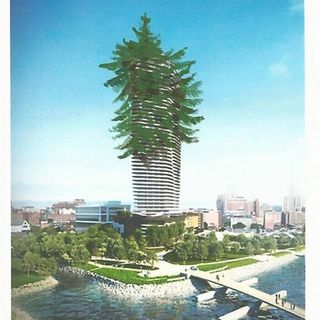Sharon Steele: Why Won't? Can't?  Fane Tower Pay For Their Tax Break? (huh?)