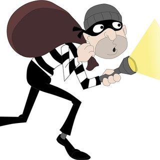 El Ladrón Delicado y Exigente de la COMBI