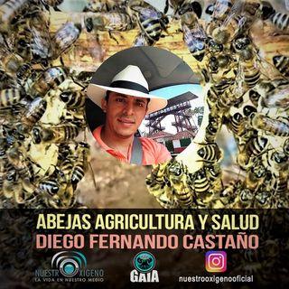 NUESTRO OXIGENO Abejas agricultura y salud - Diego Fernando Castaño