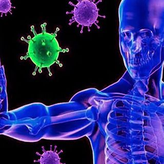 El Sistema Inmunológico: nuestra defensa contra las infecciones