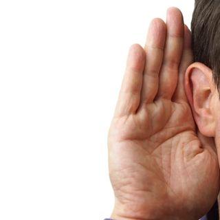 QUARENTENA SHOW #1 O Ouvido Absoluto