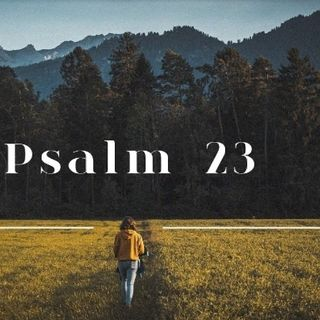 Episode 14- Psalm 23