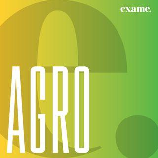 exame.agro