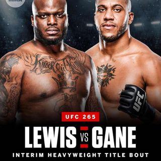 UFC 265 (Recap)
