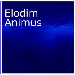Elodim - Album (EP) Animus