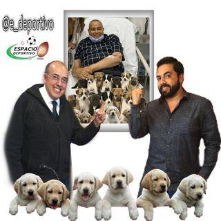 Llegamos al Viernes con la novedad que los perritos llegaron bien, Espacio Deportivo de la Tarde 14 de Mayo 2021