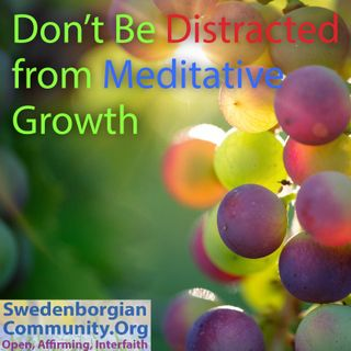 Don't Be Distracted from Meditative Growth - Interfaith-Swedenborgian Reflection with Musical Meditation
