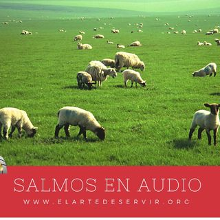 19_Salmos-000
