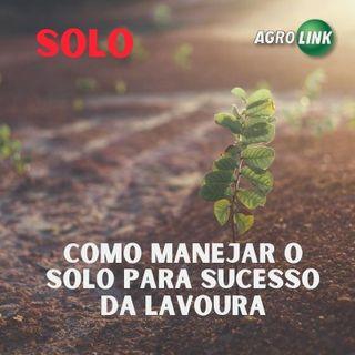 Como manejar o solo para sucesso da lavoura?