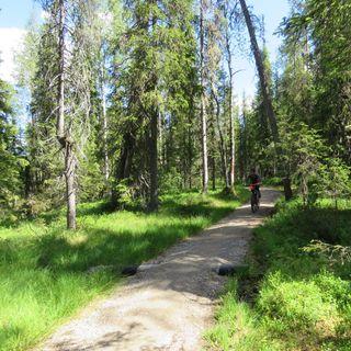 82.Paksupyöräilijän jäljillä Syötteen kansallispuistossa #1