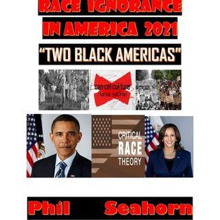"RACE IGNORANCE IN AMERICA 2021:TWO BLACK AMERICAS """