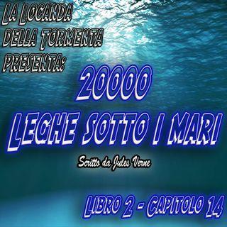 20000 Leghe sotto i mari - Parte 2 - Capitolo 14