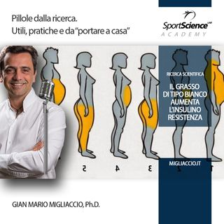 Grasso Bianco e Grasso Bruno, insulino resistenza e sport