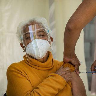 74 % de adultos mayores, vacunados
