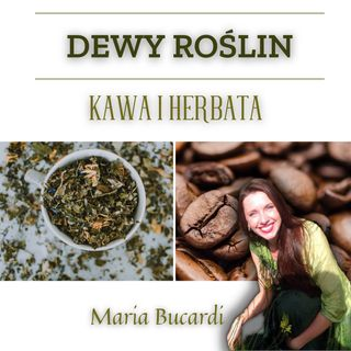 Dewy Roślin - Kawa i Herbata - słuchowisko Marii Bucardi