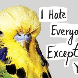 Clinton Kelly Still Hates Everyone Except You