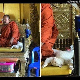 darshan.What is chakra disease?p5Crystal Monastery