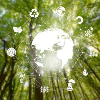 Ambiente Digital: Liberdade ou Necessidade?