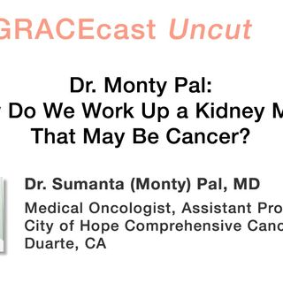 Dr. Monty Pal: How Do We Work Up a Kidney Mass That May Be Cancer?