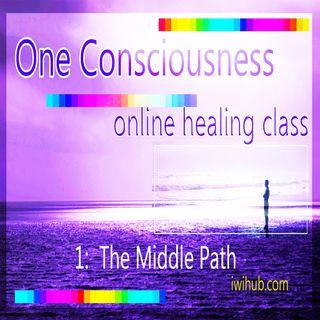 One Consciousness II: Spiritual Discernment by Wim