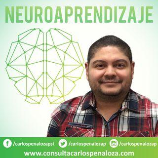 #8 - Neuroaprendizaje y dificultades del desarrollo